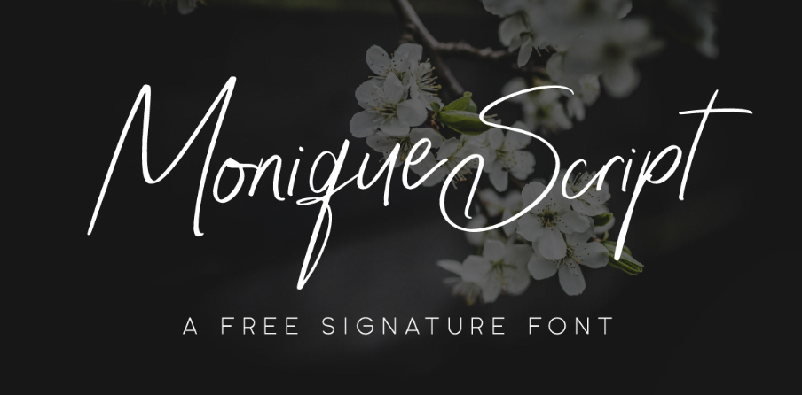 Monique Script clean fonts