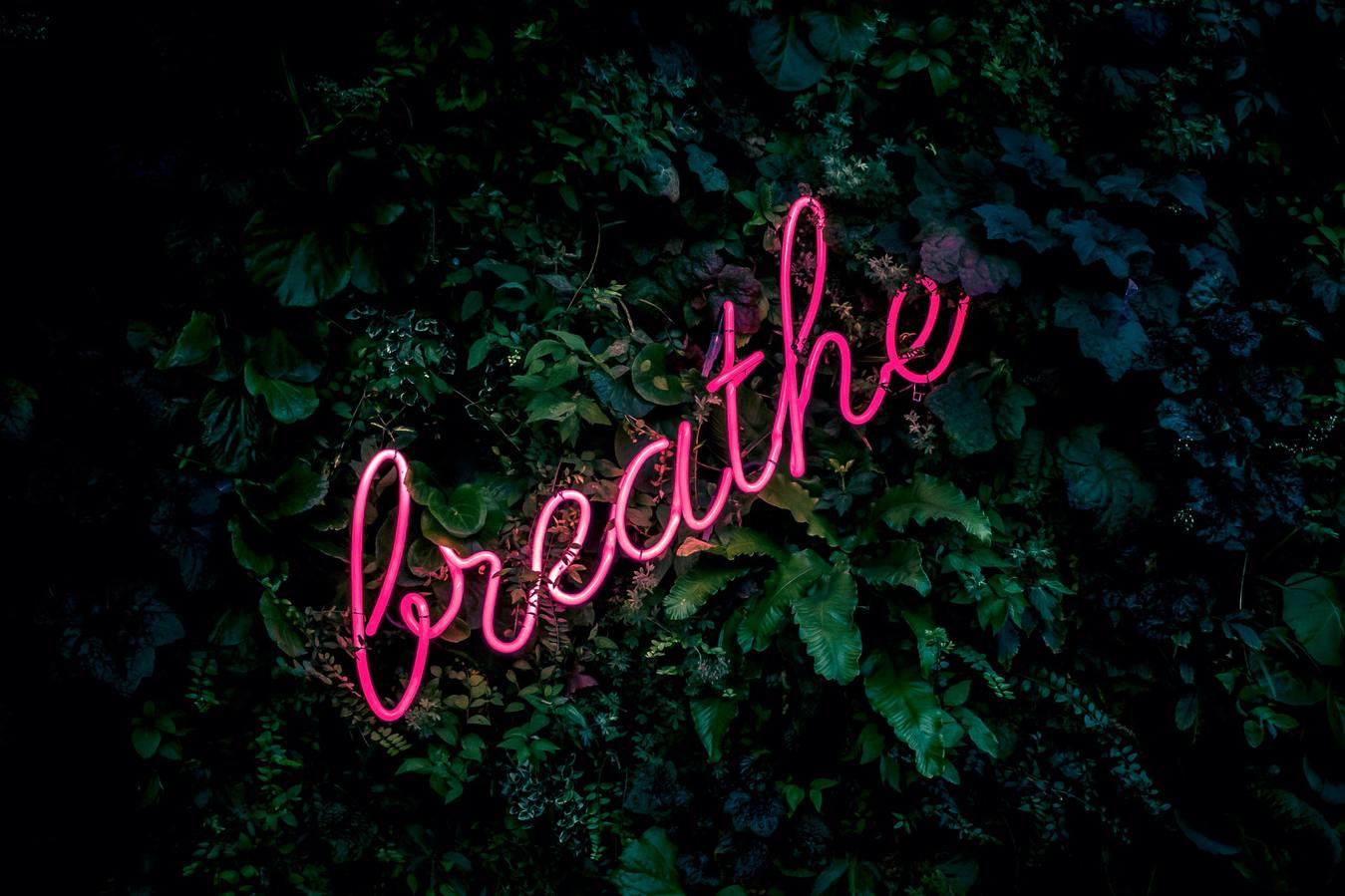 Breathe Pink Neon Sign Green Background