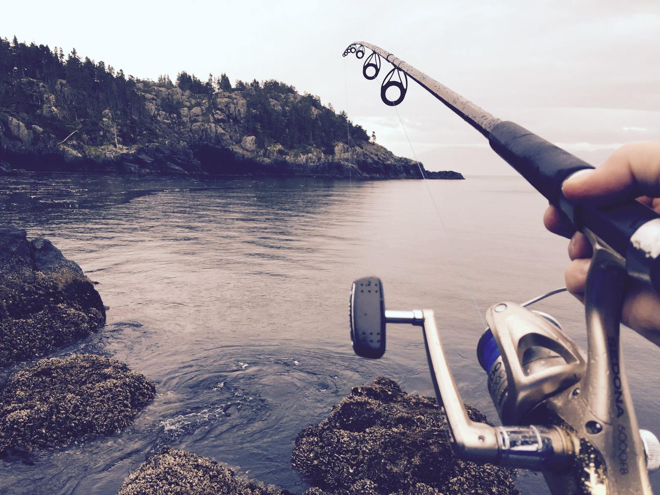Fishing Rod in Water, Rocks