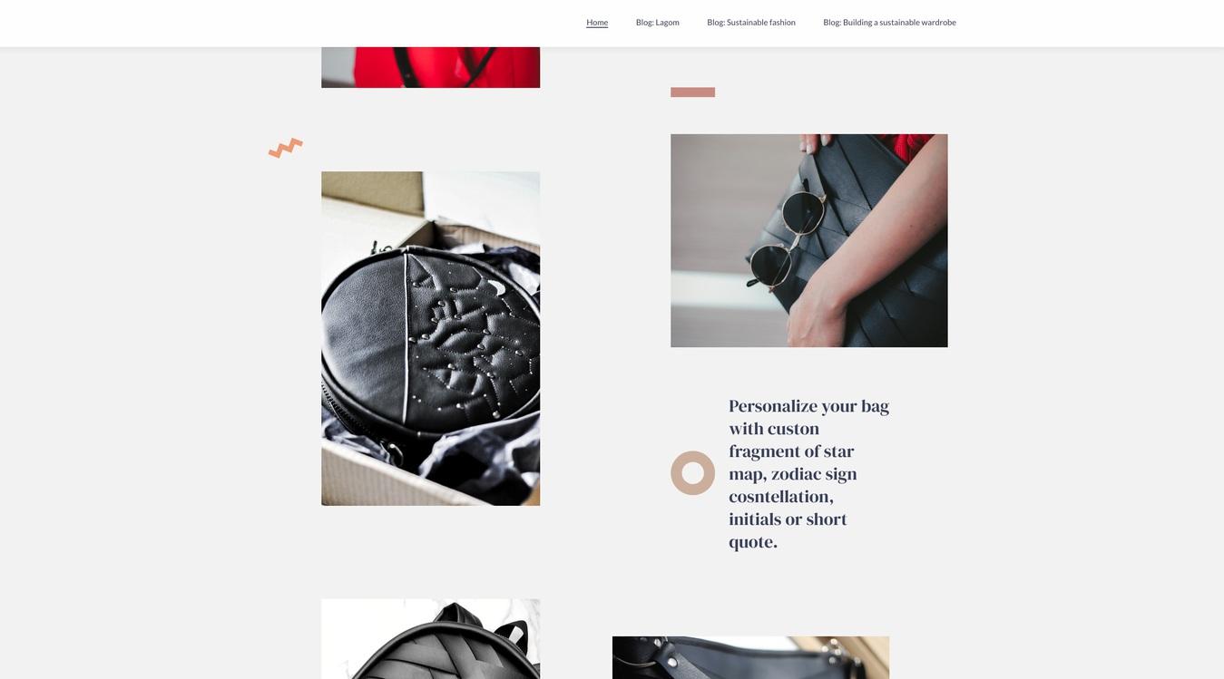 Lapsa Brand Website Screenshot