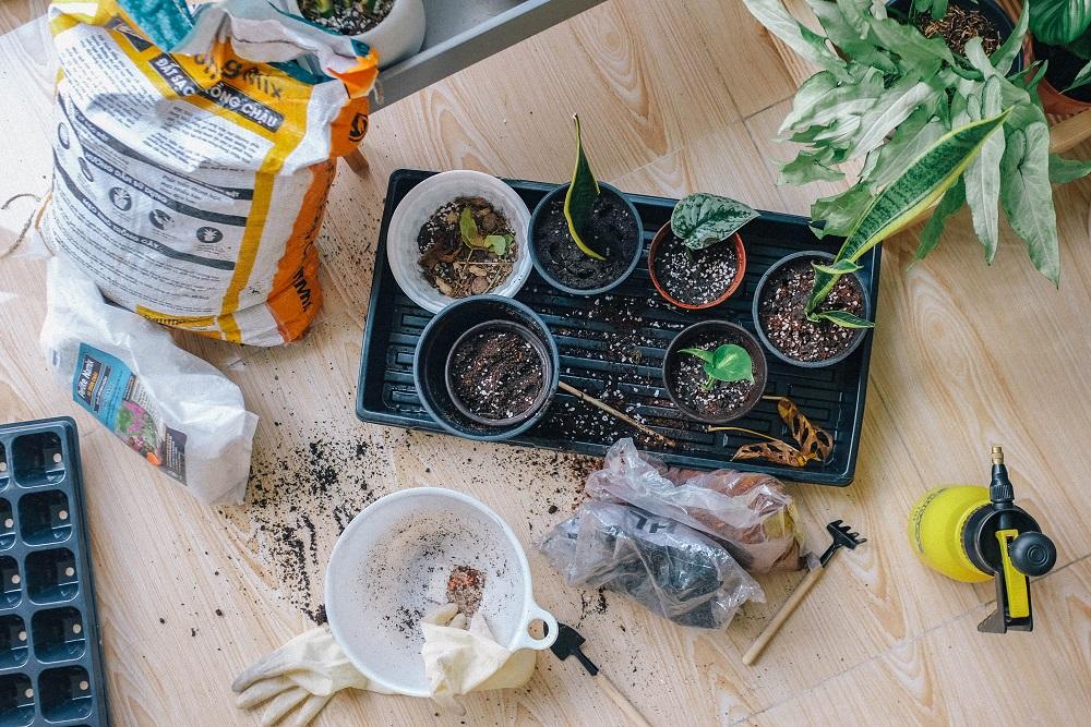 vasos de planta e ferramentas de jardinagem no chão
