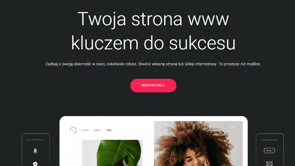 Strona tytułowa Zyro