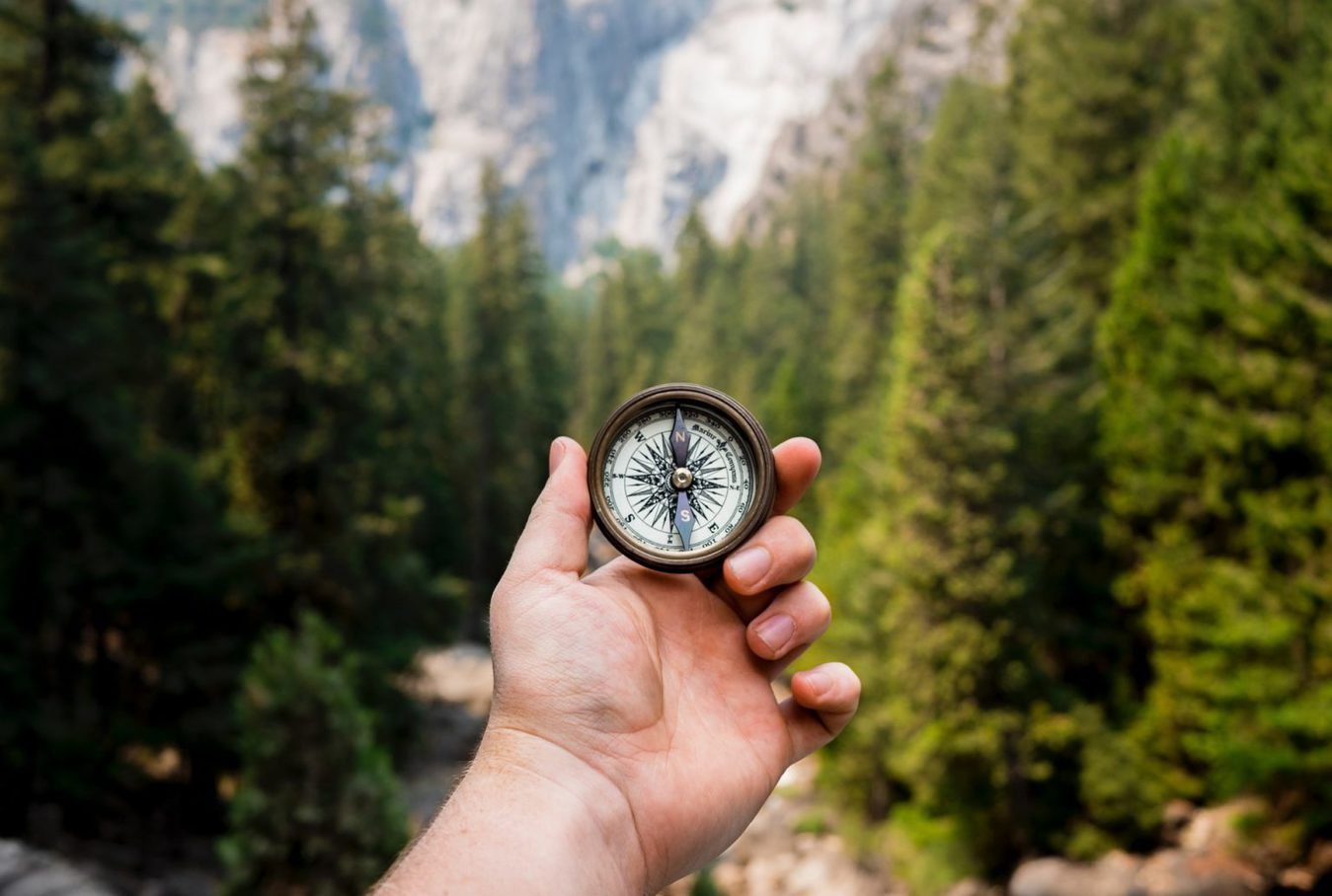 A person holding a compass in the woods