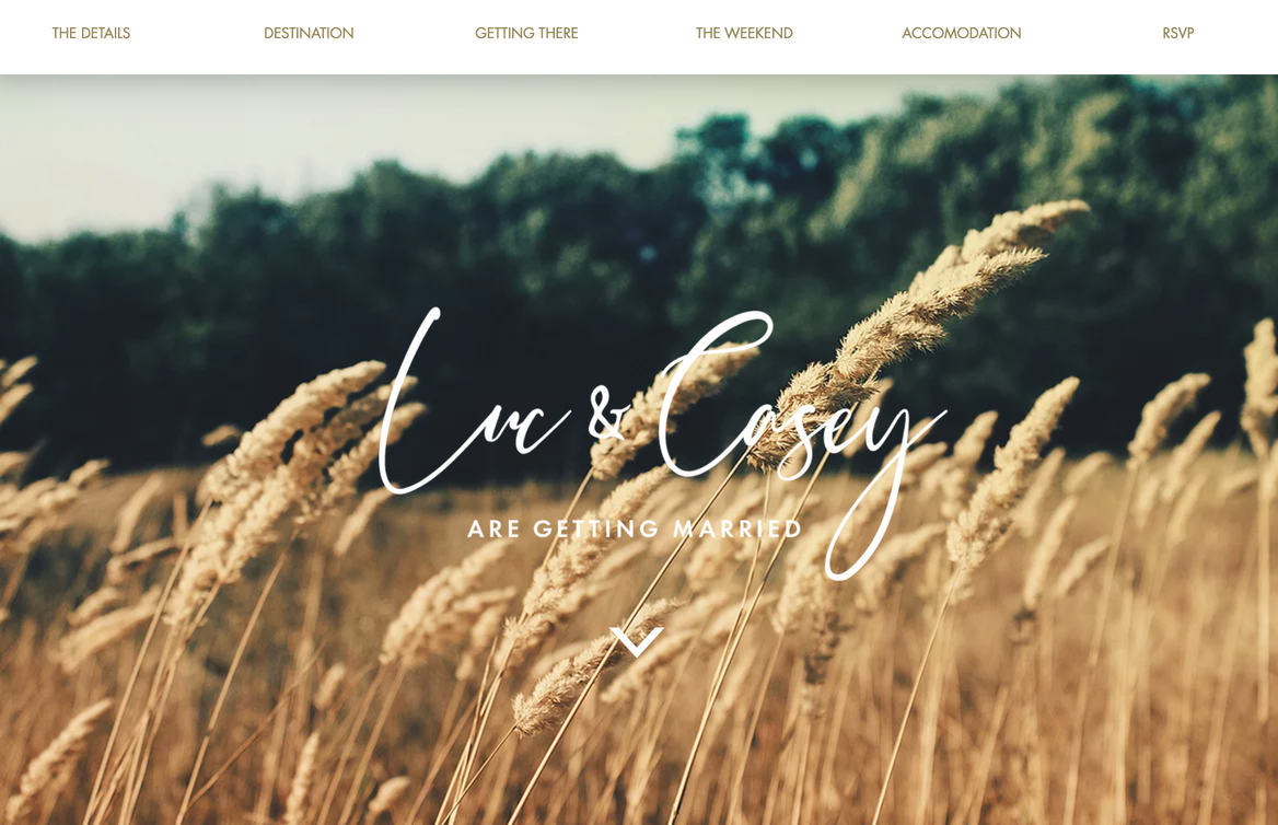 mẫu website wedding Luc and Casey
