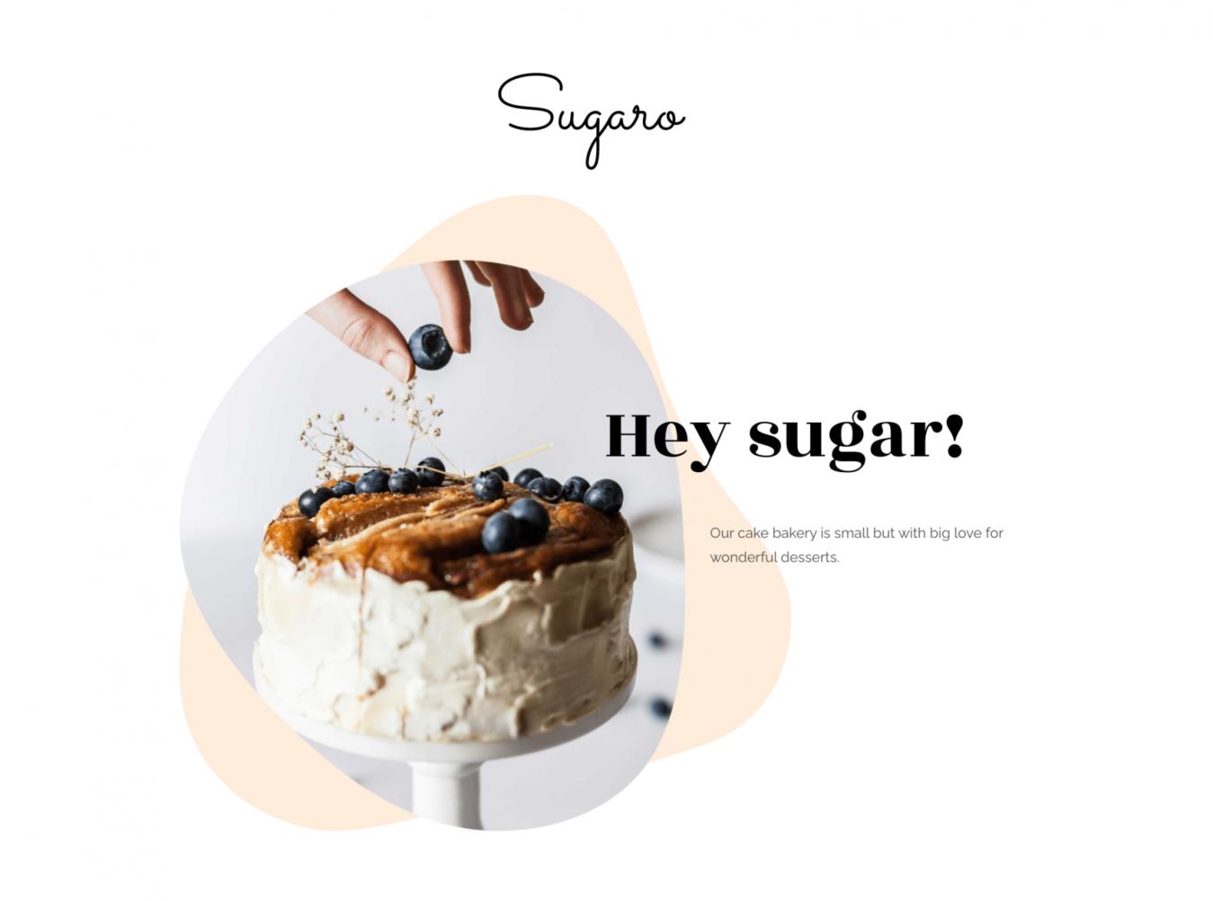 Zyro Sugaro website landing page