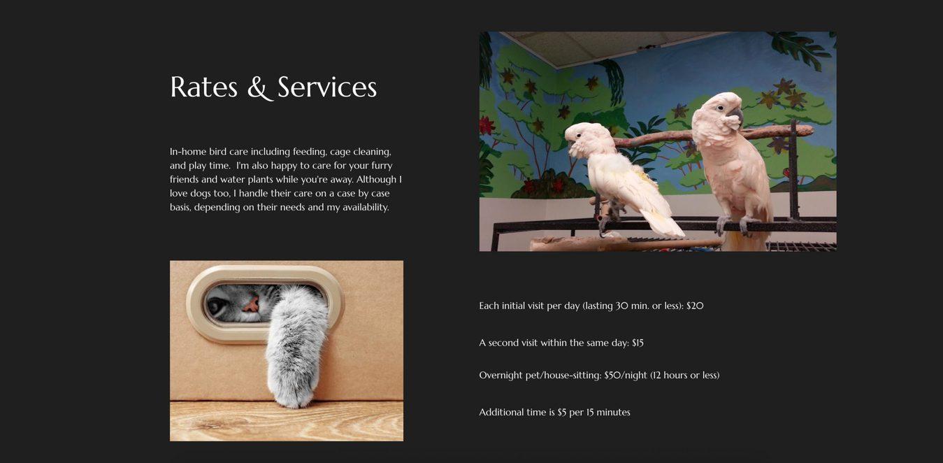 Página do site Mama Bear Birdie Care