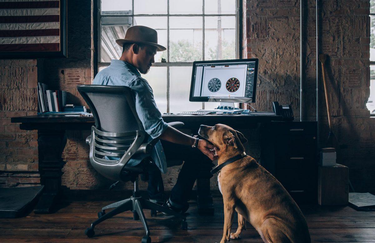 Seorang pria bekerja menggunakan laptop, ditemani seekor anjing