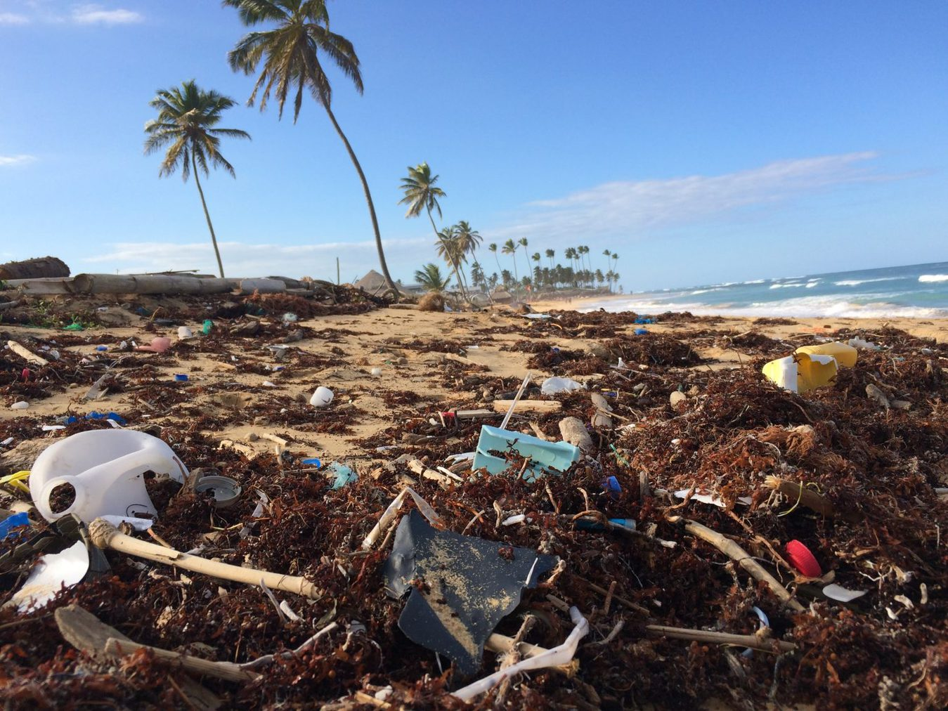 tropical beach covered in plastic garbage