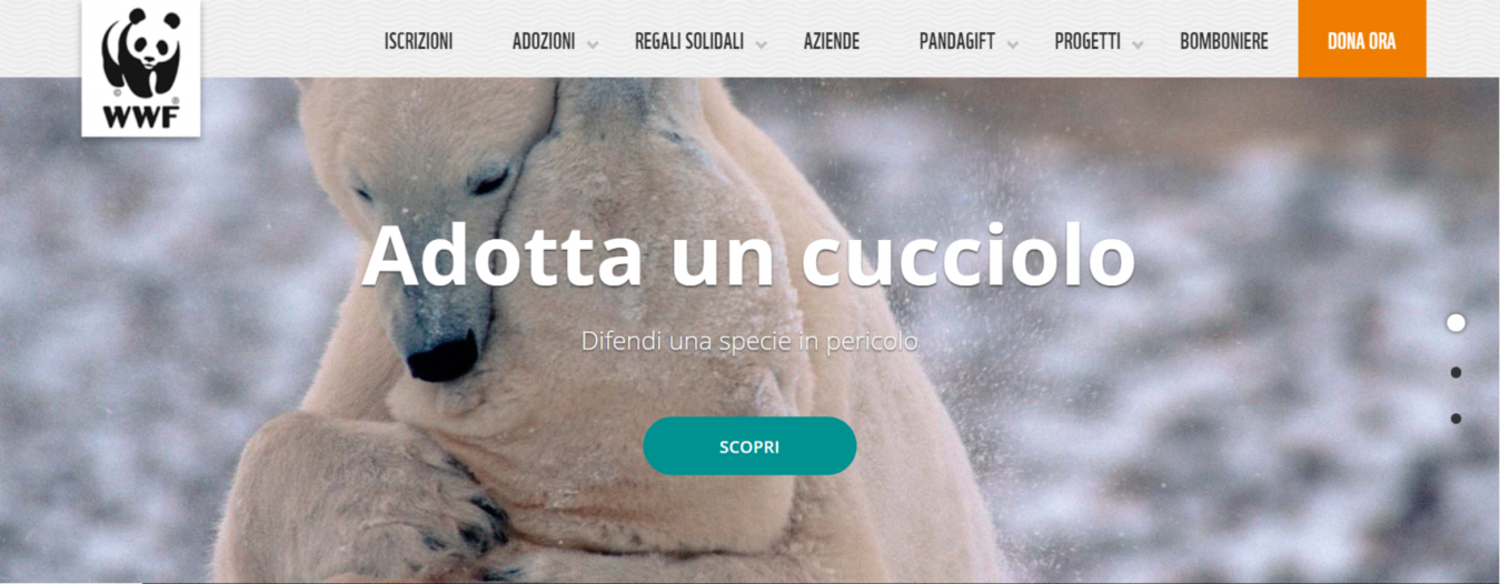 Esempio di un sito web no-profit (WWF)