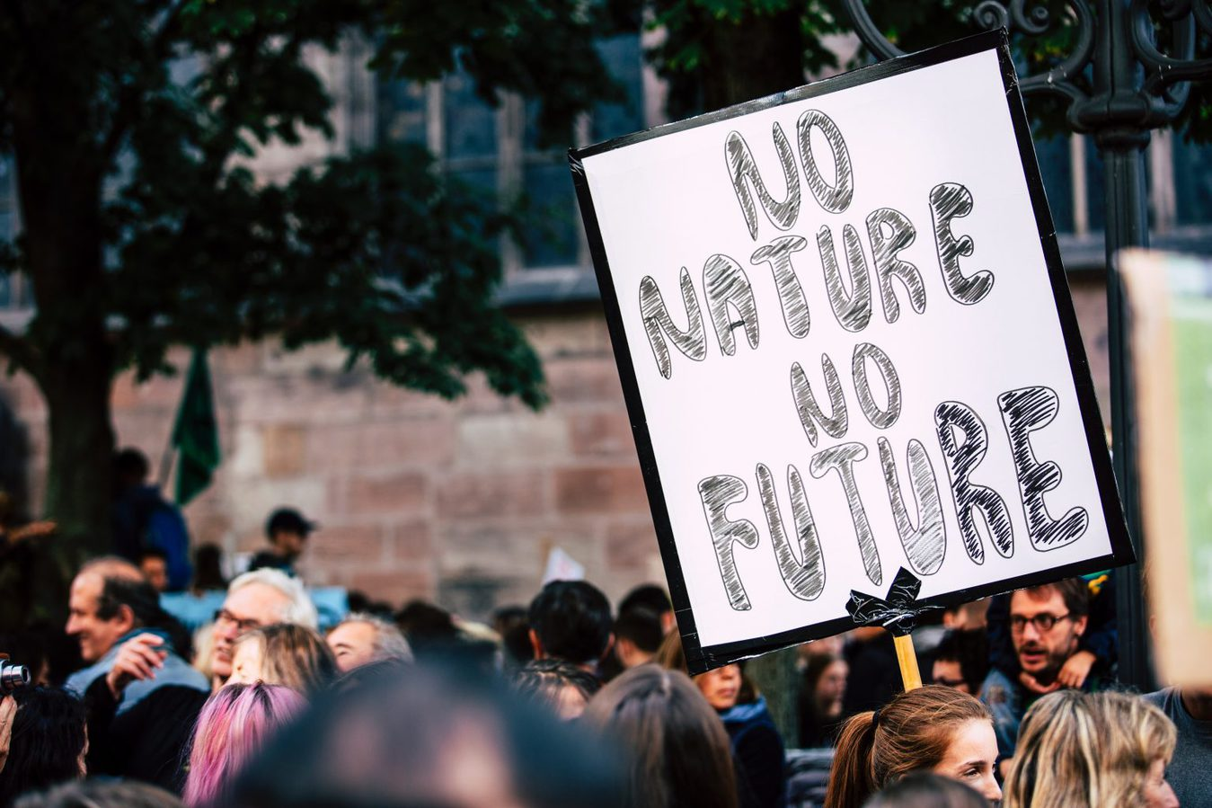 man holding up sign that says 'no nature no future'