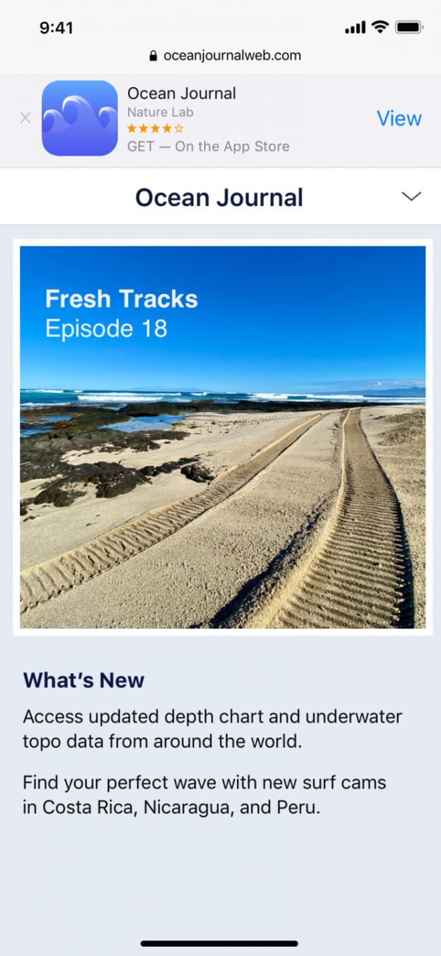 Ocean app Apple Smart Banner example