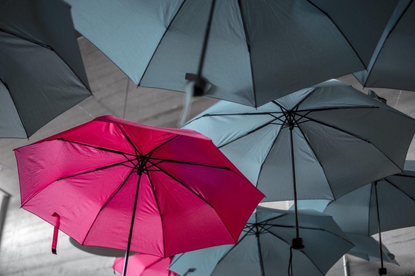pink umbrella among several grey umbrellas