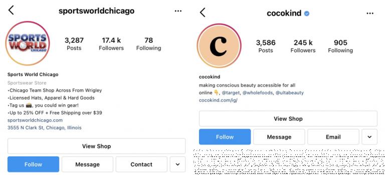 Bio profil Instagram