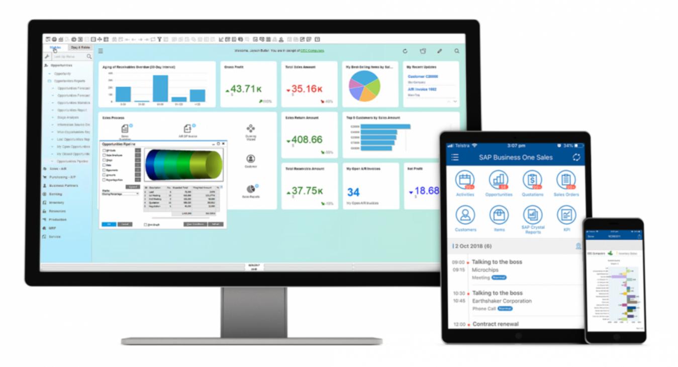 Modello SAP Business