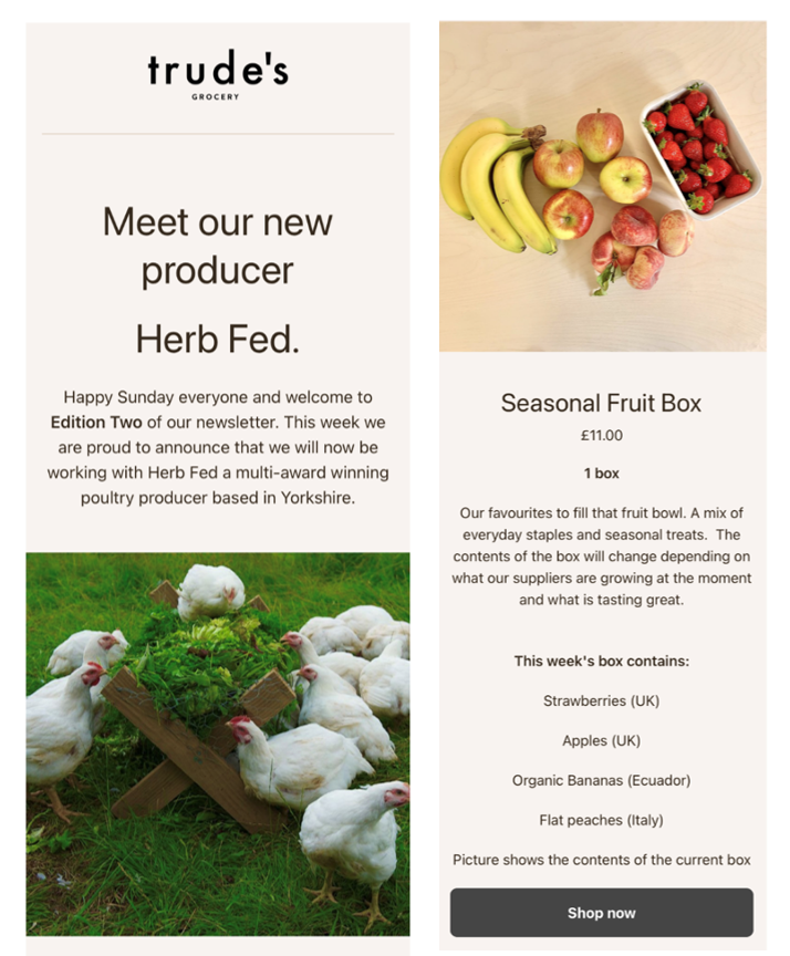 Exemplo de newsletter do mercado Trude's