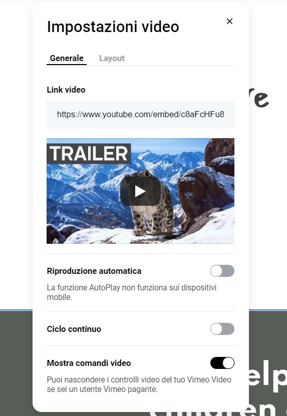 Impostazioni video dell'editor Zyro